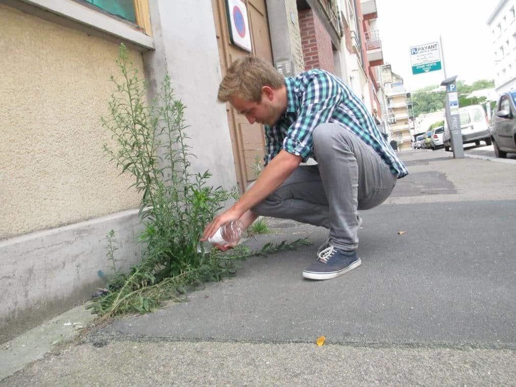 herbsfolles